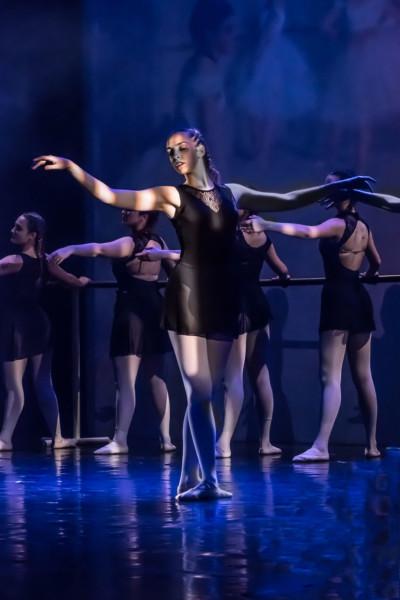 Music Dance and Mimic Art