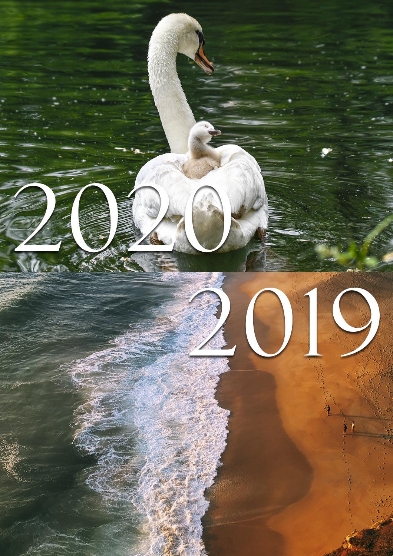 FOTO IN FUGA 2019